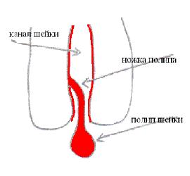 foto-otsosala-po-samie-yaytsa-na-ulitse